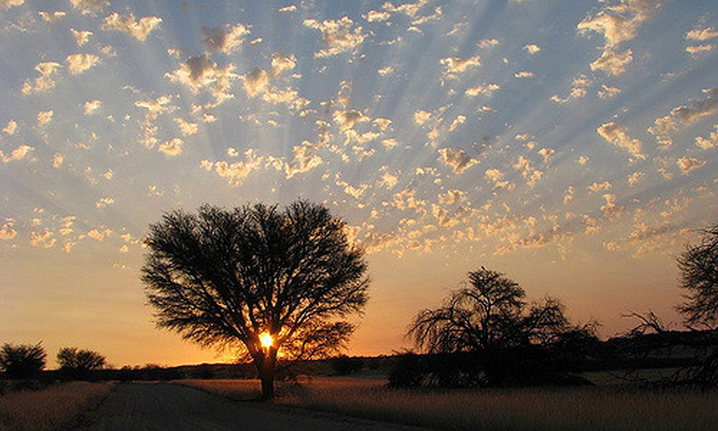 Kgalagadi Sunset - Flickr