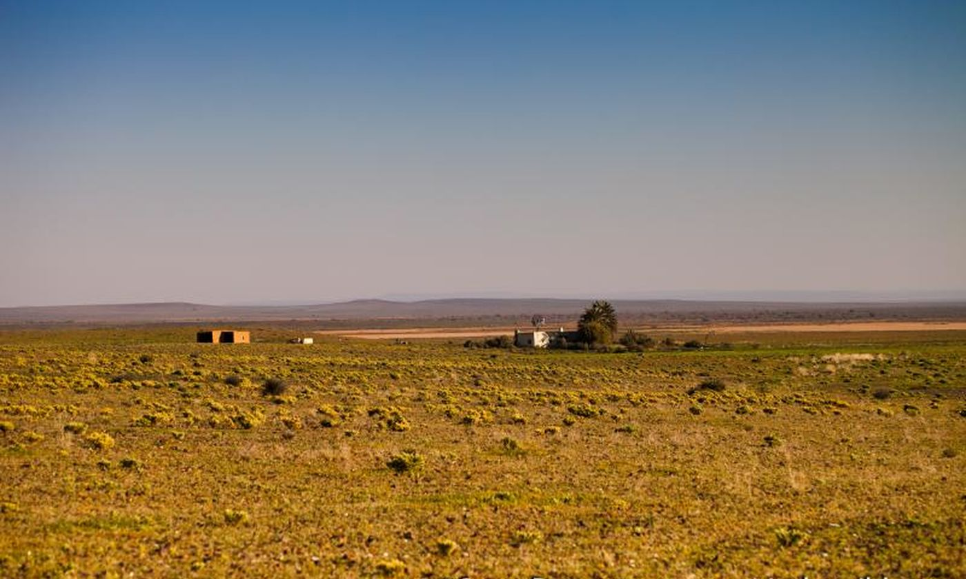 526 Tankwa Karoo National Park   South Africa   Copyright Scott Ramsay 2