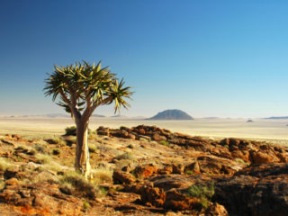Karoo Region