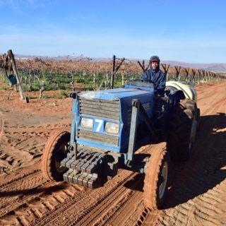 N Cape  Irrigation  Wine Route  Upington