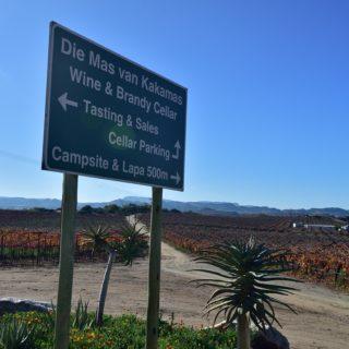 N Cape  Irrigation  Wine Route  Upington  Farm  Die Maas People