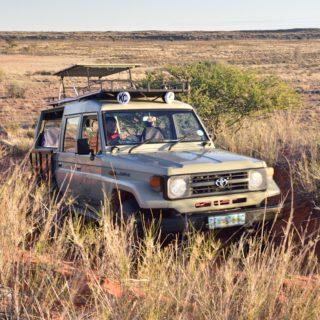 N Cape  Kalahari Red Dune Route  Kalahari Trails
