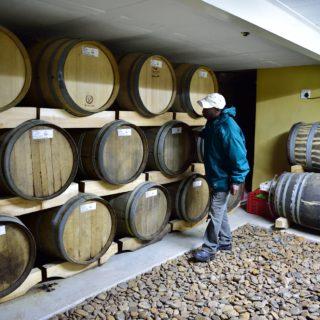 N Cape Wine Route  Die Mas Vinyard