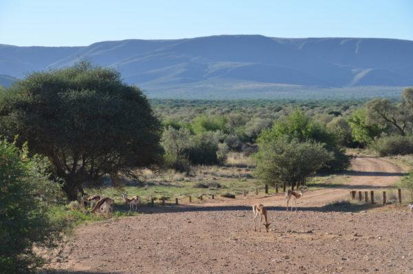N Cape  Richtersveld National Park World Heritage Site